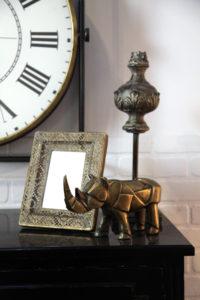 Rhinocéros laitonné