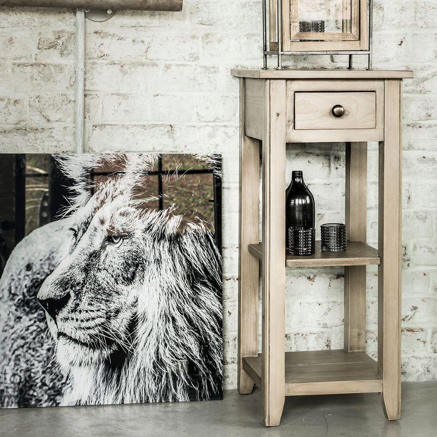 cadre lion interior's