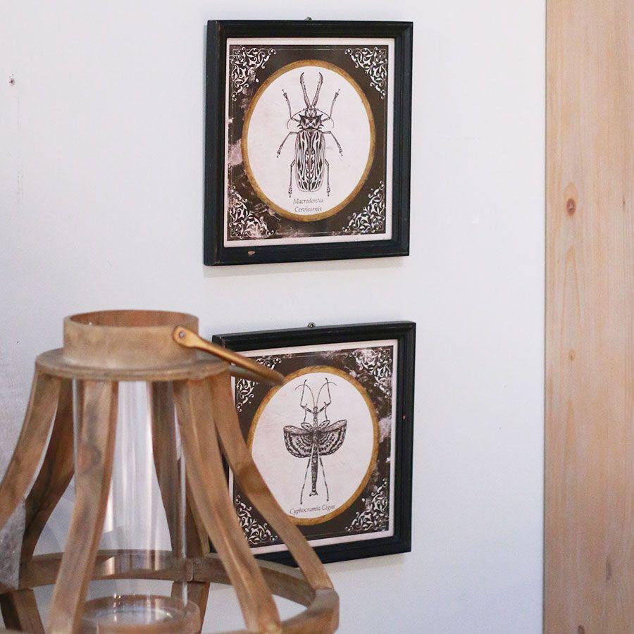 Panneaux d coratifs en bois insectes lot de 3 noir for Insecte bois meuble