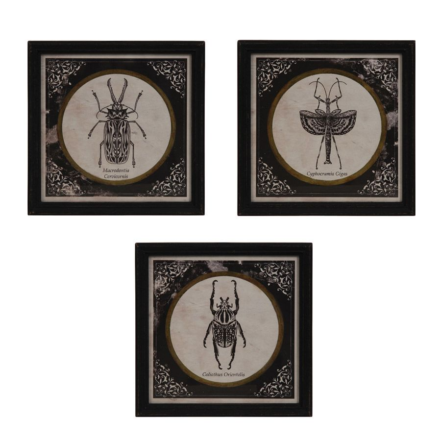 panneaux d coratifs en bois insectes lot de 3 noir interior 39 s. Black Bedroom Furniture Sets. Home Design Ideas